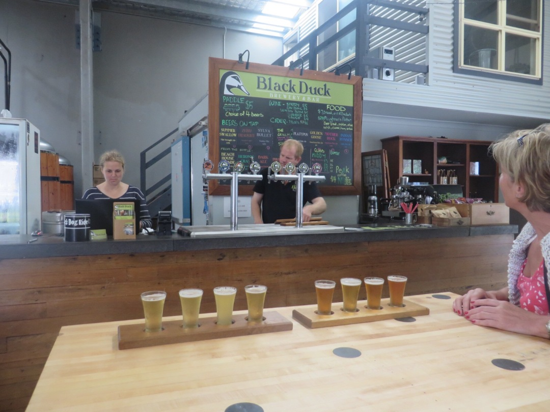 two paddles of sampling ales at the black duck brewery