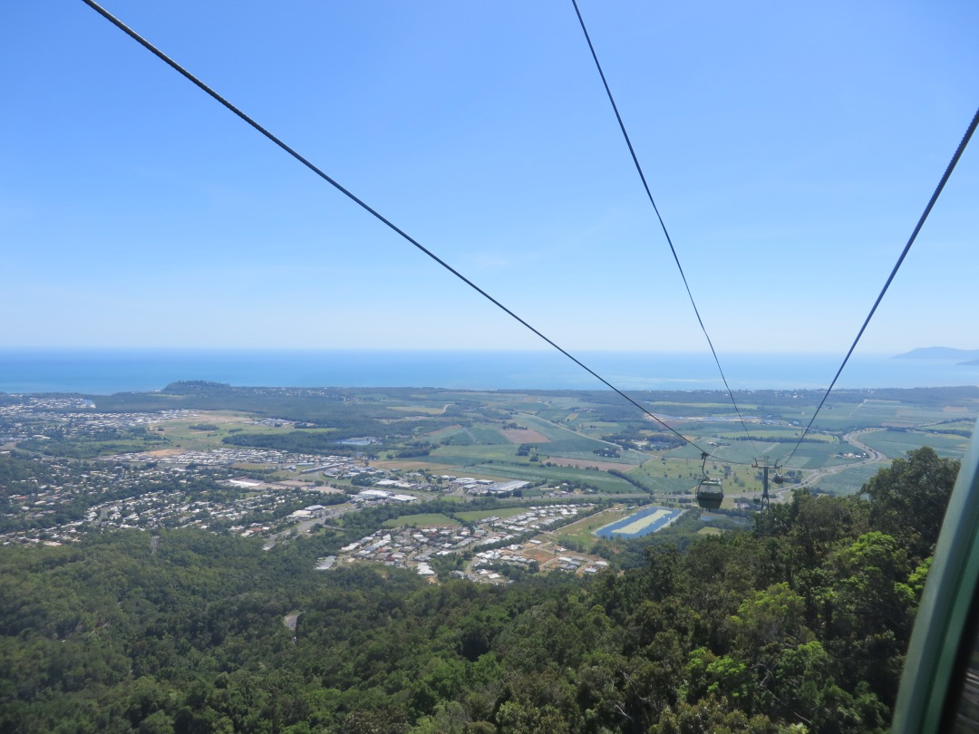 Just one of the insane views going up the Skyrail cable car to Kuranda