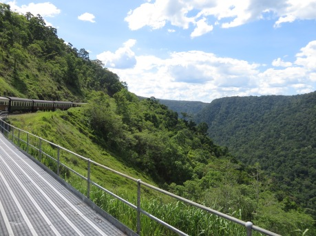 the scenic railway from Kuranda takes you through the most amazing scenery